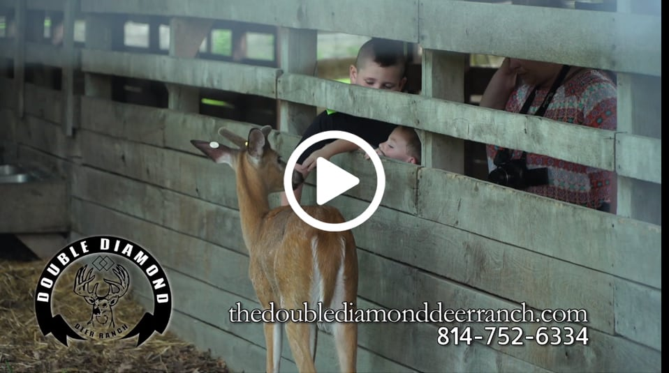 Double Diamond Deer Ranch screenshot with play button